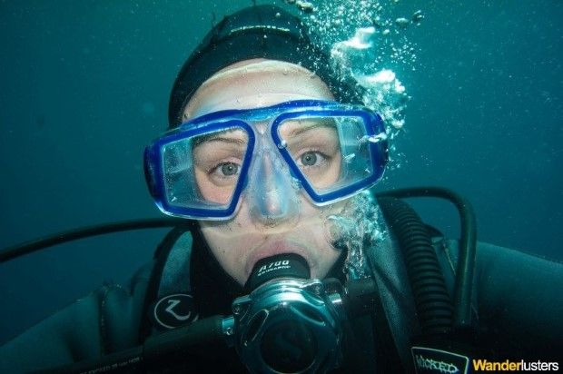 Confessions of a Divemaster