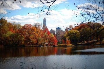 new-york-featured