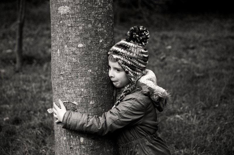 tree hugging travel tips
