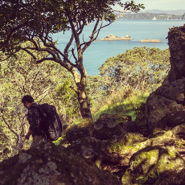 instagram-snapshots-of-the-coromandel-coastline-track