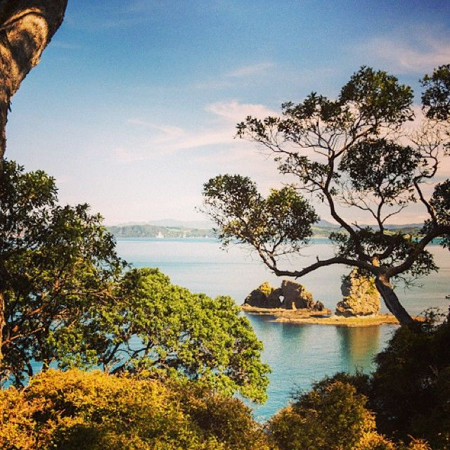 instagram-snapshots-of-the-coromandel-coastline-view-whitianga
