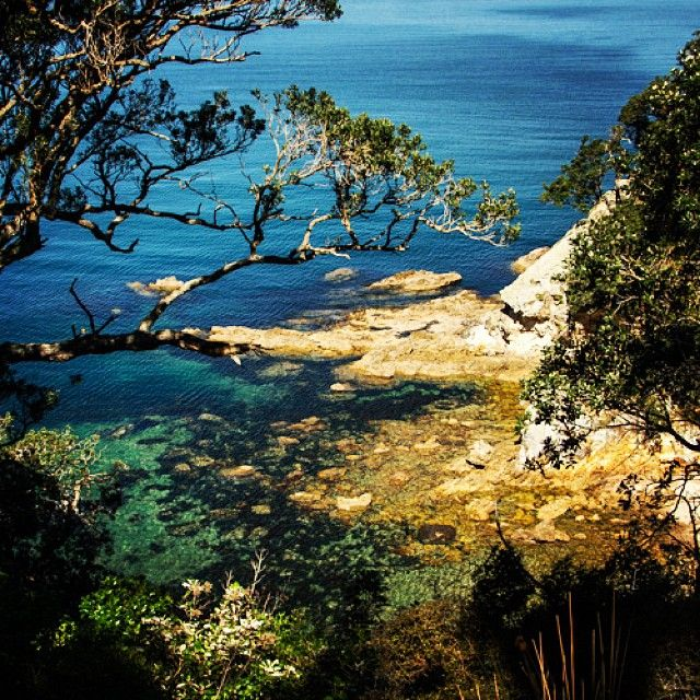 instagram-snapshots-of-the-coromandel-matapaua-coastline