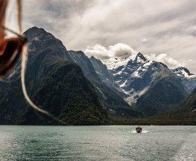 fiordland-on-film-featured