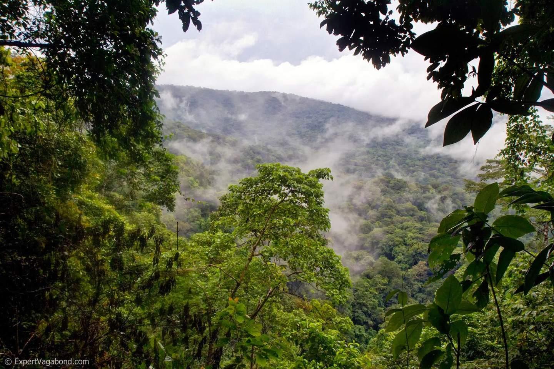 darien-gap-jungle-expert-vagabond