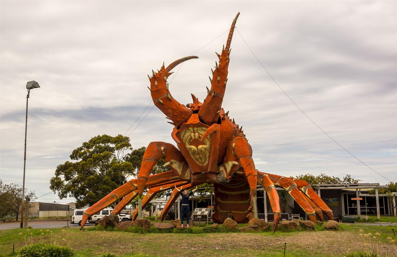 giant lobster kingston australia