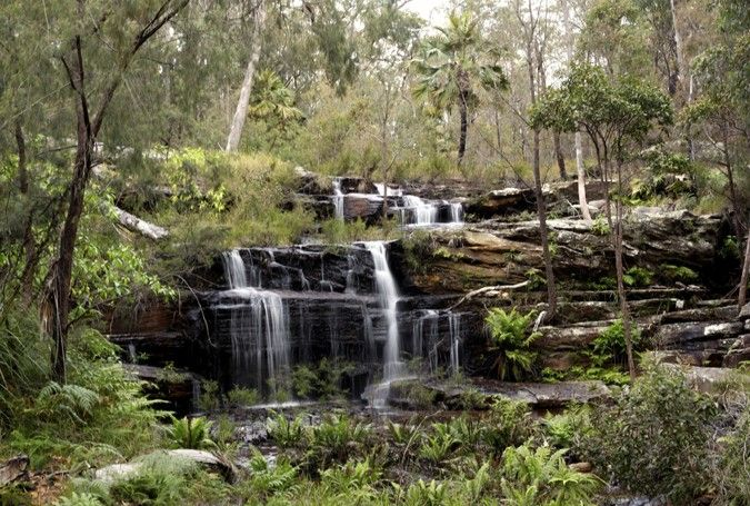 Waterfall Blackdown Tablelands