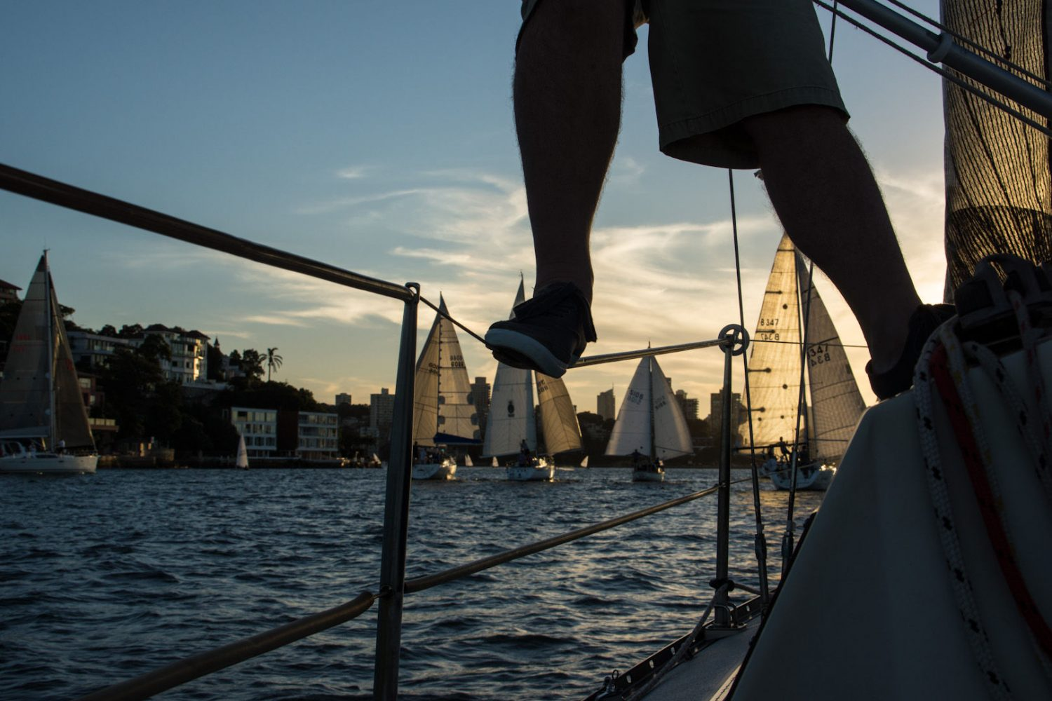 sailing-twilight-sydney-harbour-nsw-australia