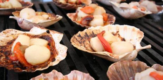 city guide auckland Seafood Festival Scallops