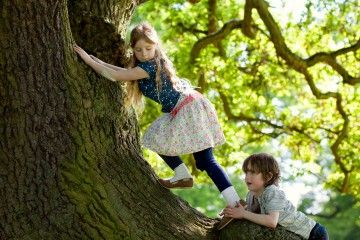 tree-hugging-travel-featured
