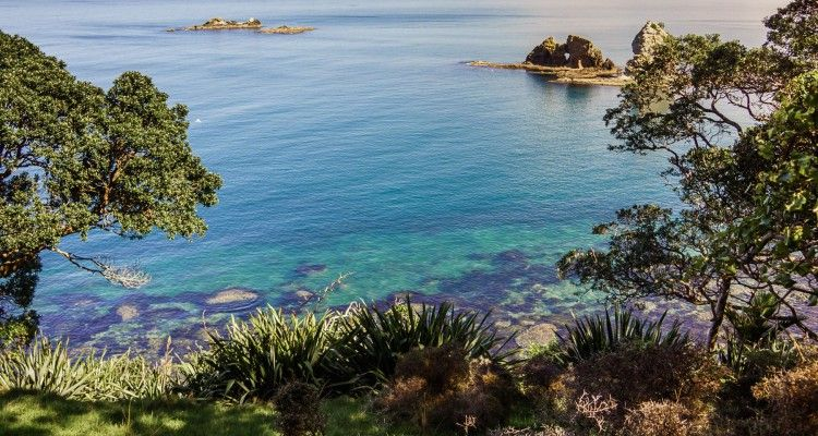 coromandel-snapshots-featured