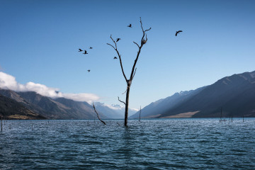 lake-wanaka-snapshots-featured-thin