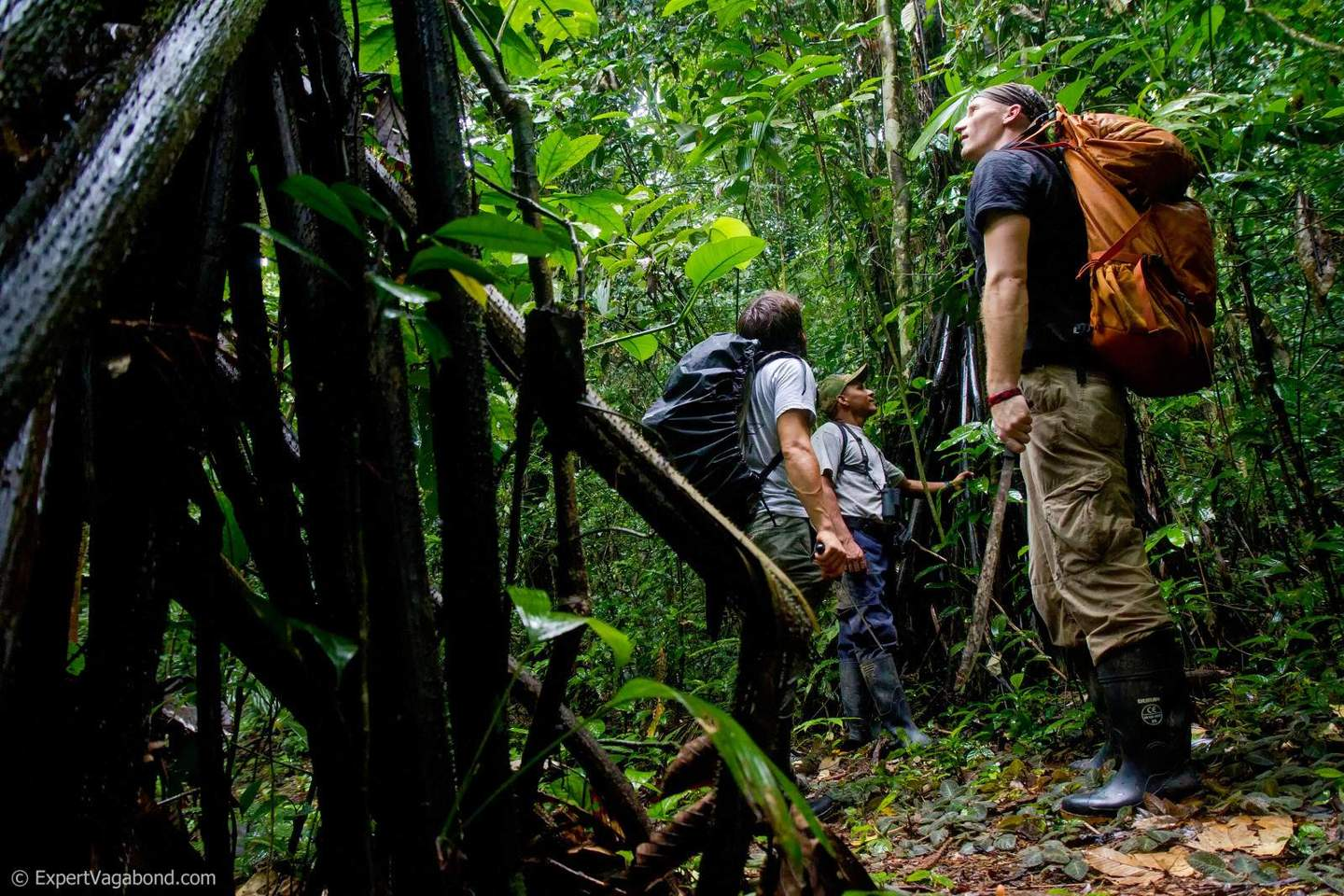 Hiking the Darien Gap via Expert Vagabond