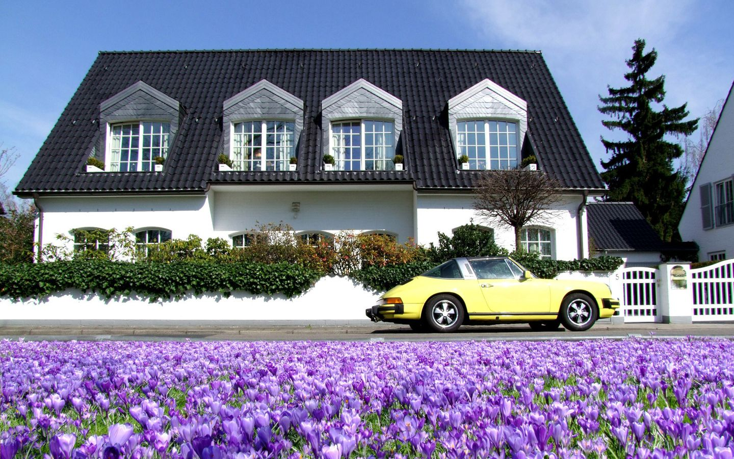 Creating a successful house sitting application for House siting