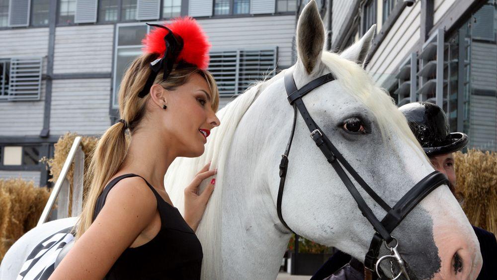 laura-horse