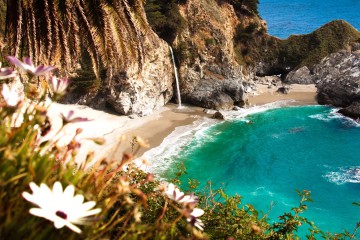 house-sitting-summer-california-big-sur