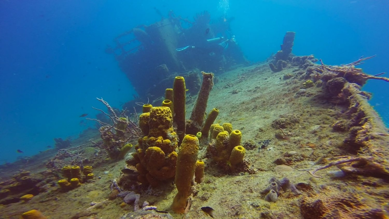 carlisle-bay-wreck