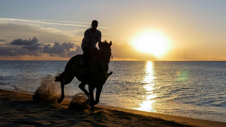 cades-bay-nevis-sunset-horse-4kphoto (1)
