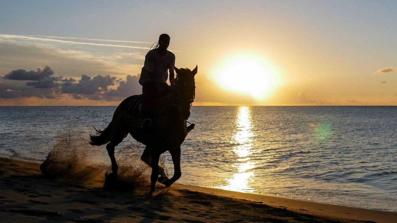 cades-bay-nevis-sunset-horse-4kphoto (2)