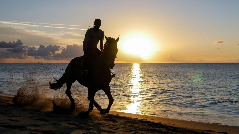 cades-bay-nevis-sunset-horse-4kphoto (3)
