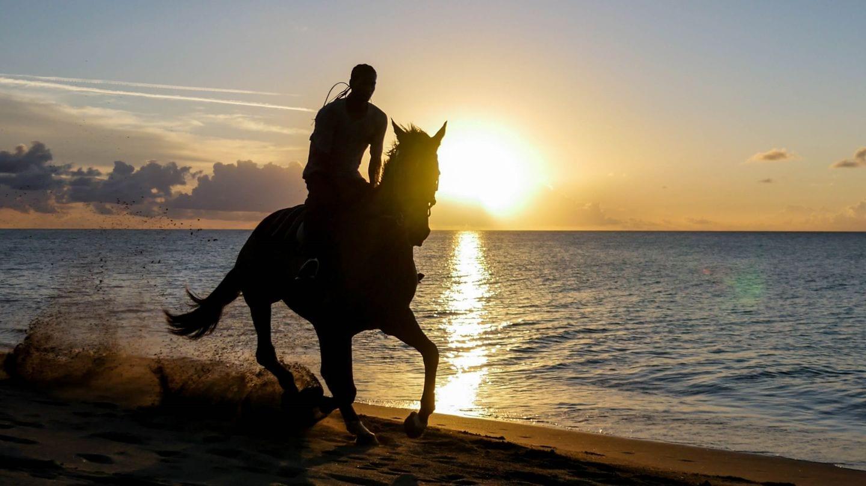 cades-bay-nevis-sunset-horse-4kphoto (4)