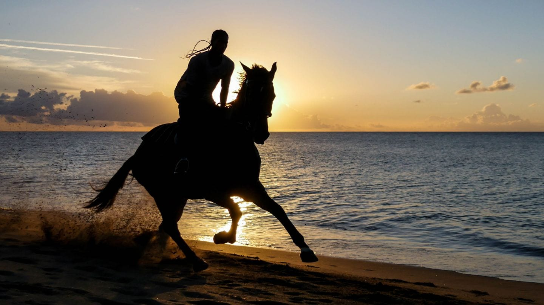 cades-bay-nevis-sunset-horse-4kphoto (6)