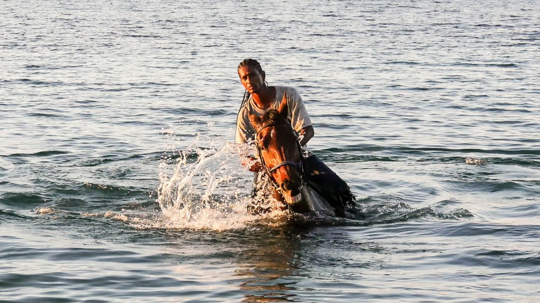 horse-rider-ocean-nevis-4kphoto