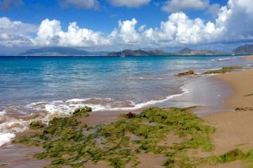pinneys-beach-nevis