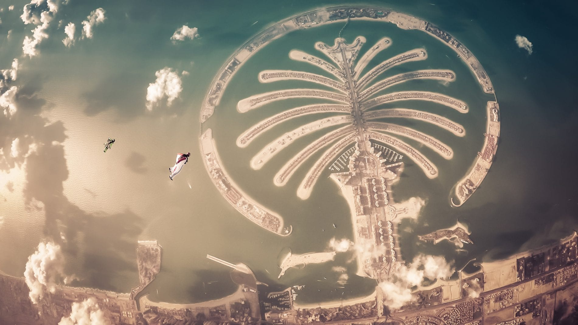 Richard Schneider - wingsuit palm
