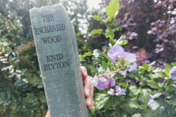 enid-blyton-enchanted-wood-book-