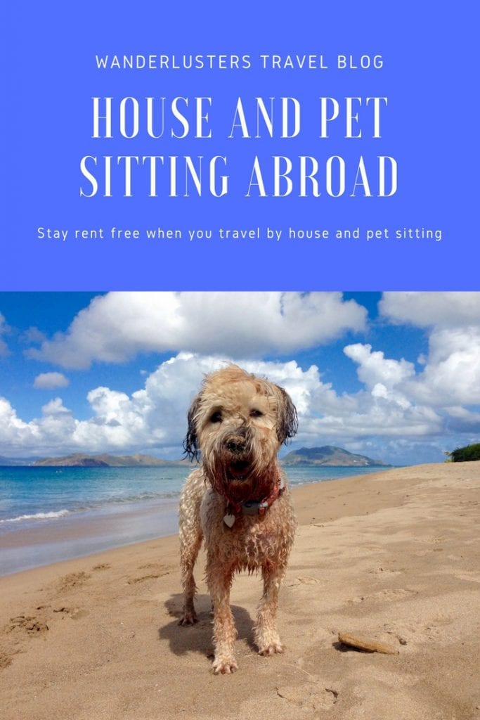 the ultimate guide to house sitting abroad